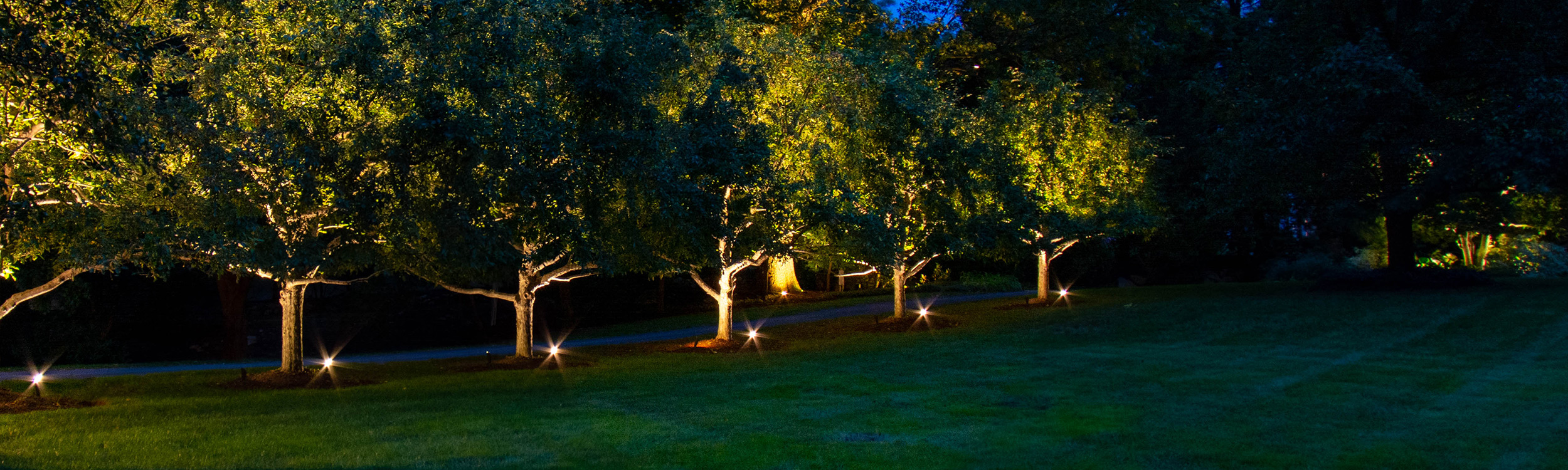Commonwealth Landscape Lighting
